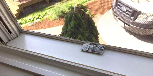"""Window"