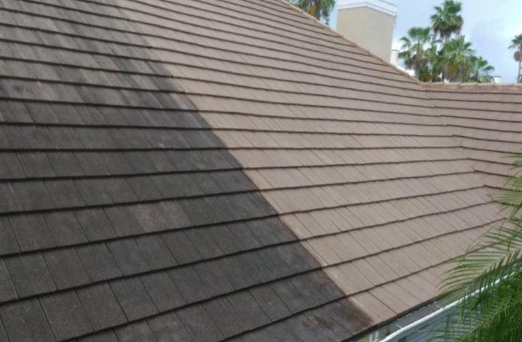Best Roof Washing Soft Washing Company in Dane County Wisconsin
