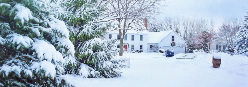 We Offer Snow Removal